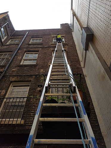 Man up ladder cleaning windows top floor building